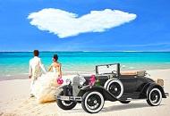 Honeymoon Arrangements Image